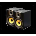 Speaker back